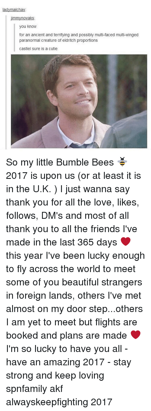 you beauty: ladymalchav  mmyno vaks  you know  for an ancient and terrifying and possibly multi-faced multi-winged  paranormal creature of eldritch proportions  Castiel sure is a cutie So my little Bumble Bees 🐝 2017 is upon us (or at least it is in the U.K. ) I just wanna say thank you for all the love, likes, follows, DM's and most of all thank you to all the friends I've made in the last 365 days ❤ this year I've been lucky enough to fly across the world to meet some of you beautiful strangers in foreign lands, others I've met almost on my door step...others I am yet to meet but flights are booked and plans are made ❤I'm so lucky to have you all - have an amazing 2017 - stay strong and keep loving spnfamily akf alwayskeepfighting 2017