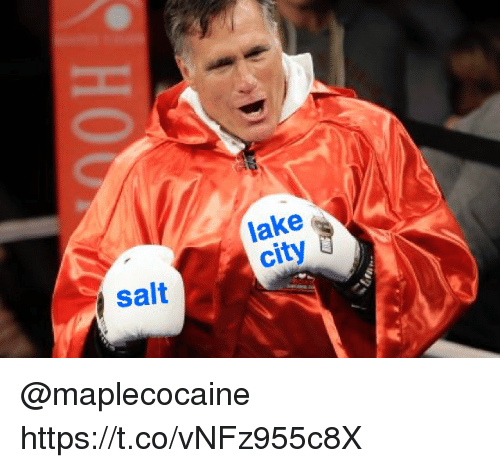 Memes, 🤖, and Salt: lake  city  Salt @maplecocaine https://t.co/vNFz955c8X