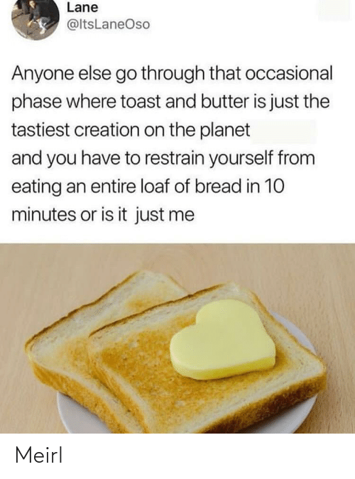 Is Just: Lane  @ltsLaneOso  Anyone else go through that occasional  phase where toast and butter is just the  tastiest creation on the planet  and you have to restrain yourself from  eating an entire loaf of bread in 10  minutes or is it just me Meirl