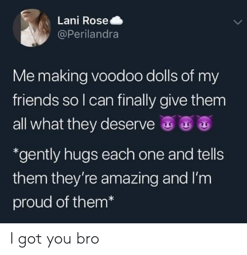 Friends, Rose, and Amazing: Lani Rose  @Perilandra  Me making voodoo dolls of my  friends so I can finally give them  all what they deserve  *gently hugs each one and tells  them they're amazing and I'm  proud of them* I got you bro