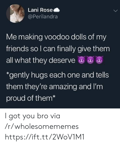 Friends, Rose, and Amazing: Lani Rose  @Perilandra  Me making voodoo dolls of my  friends so I can finally give them  all what they deserve  *gently hugs each one and tells  them they're amazing and I'm  proud of them* I got you bro via /r/wholesomememes https://ift.tt/2WoV1M1