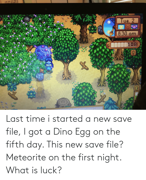 dino: Last time i started a new save file, I got a Dino Egg on the fifth day. This new save file? Meteorite on the first night. What is luck?