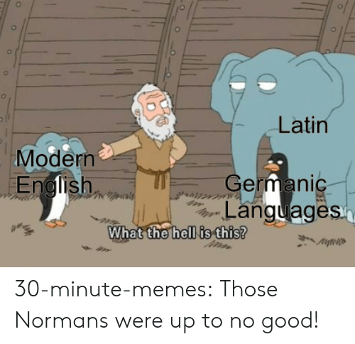 Memes, Target, and Tumblr: Latin  Modern  German  Languages  hell is this?  What the 30-minute-memes:  Those Normans were up to no good!
