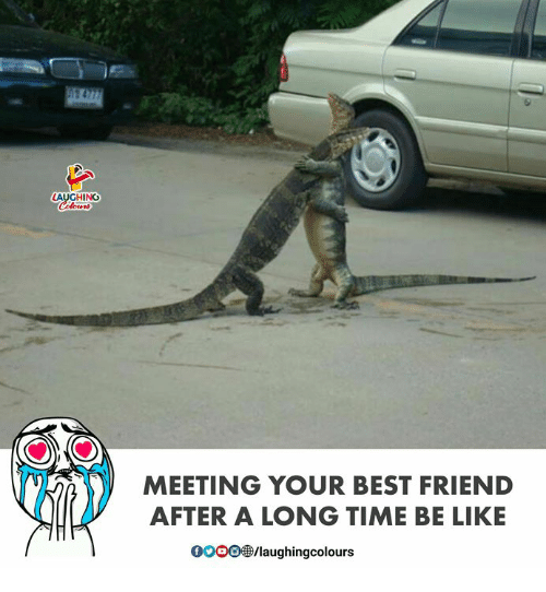 Laughin: LAUGHIN  MEETING YOUR BEST FRIEND  AFTER A LONG TIME BE LIKE  000083/laughingcolours