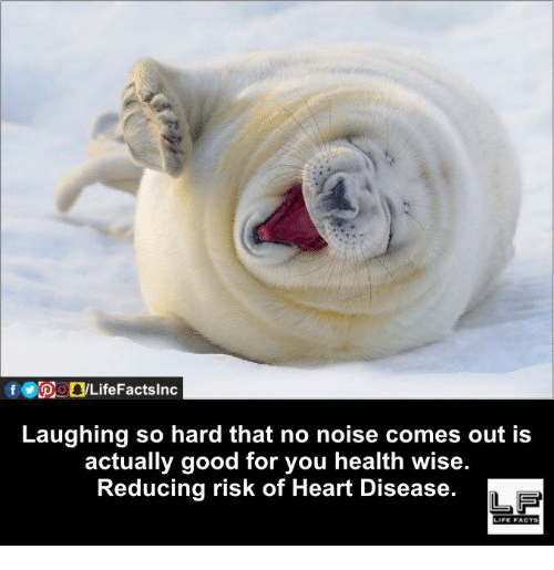 heart disease: Laughing so hard that no noise comes out is  actually good for you health wise.  Reducing risk of Heart Disease.