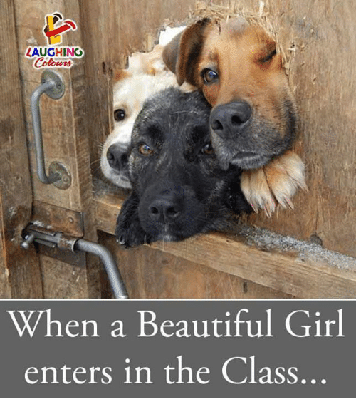 Beautiful, Girl, and Indianpeoplefacebook: LAUGHINO  When a Beautiful Girl  enters in the Class..