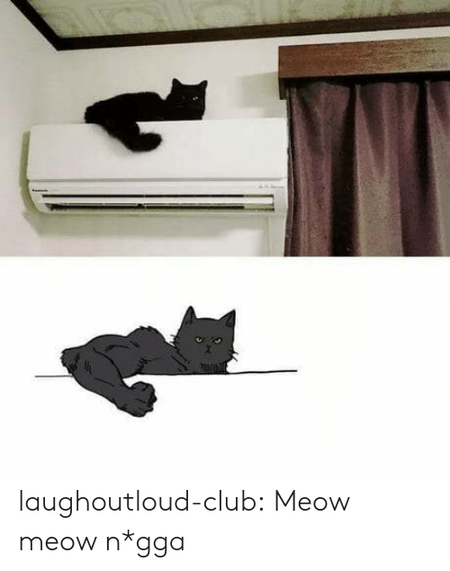 Club, Tumblr, and Blog: laughoutloud-club:  Meow meow n*gga