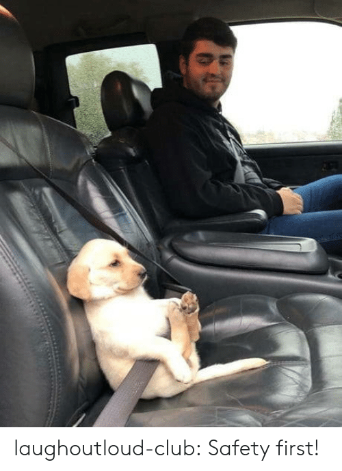 safety first: laughoutloud-club:  Safety first!
