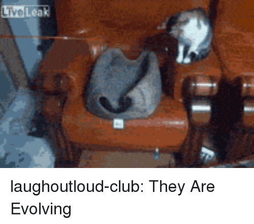 Club, Tumblr, and Blog: laughoutloud-club:  They Are Evolving