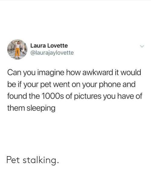 Stalking: Laura Lovette  @laurajaylovette  Can you imagine how awkward it would  be if your pet went on your phone and  found the 100Os of pictures you have of  them sleeping Pet stalking.