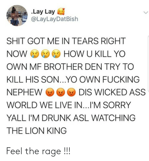 Ass, Drunk, and Fucking: .Lay Lay  @LayLayDatBish  SHIT GOT ME IN TEARS RIGHT  NOW O O O HOW U KILL YO  OWN MF BROTHER DEN TRY TO  KILL HIS SON...YO OWN FUCKING  O DIS WICKED ASS  NEPHEW O  WORLD WE LIVE IN...I'M SORRY  YALL I'M DRUNK ASL WATCHING  THE LION KING Feel the rage !!!