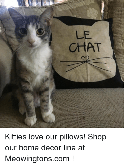 Le Chat Kitties Love Our Pillows Shop Our Home Decor Line At