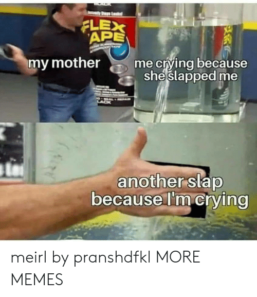 Crying, Dank, and Flexing: Leadet  FLEX  APE  me crying because  sheslapped me  my mother  another slap  because I'm crying meirl by pranshdfkl MORE MEMES