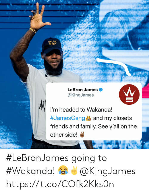 Wakanda: #LeBronJames going to #Wakanda! 😂✌️@KingJames https://t.co/COfk2Kks0n