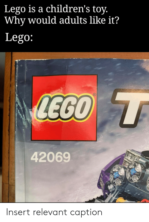 Insert: Lego is a children's toy.  Why would adults like it?  Lego:  LEGO T  42069 Insert relevant caption