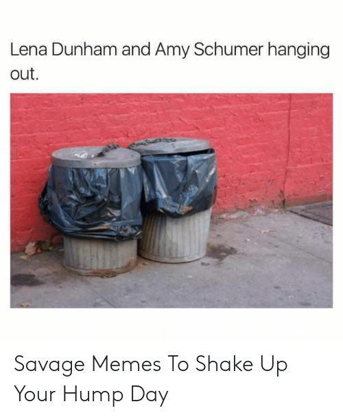 Hump Day: Lena Dunham and Amy Schumer hanging  out Savage Memes To Shake Up Your Hump Day