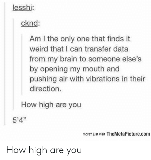"am i the only: lesshi:  cknd:  Am I the only one that finds it  weird that I can transfer data  from my brain to someone else  by opening my mouth and  pushing air with vibrations in thei  direction.  How high are you  5'4""  more? just visit TheMetaPicture.com How high are you"