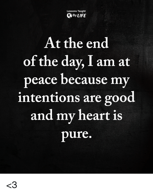 Life, Memes, and Good: Lessons Taught  By LIFE  At the end  of the day, I am at  peace because my  intentions are good  and my heart is  pure. <3