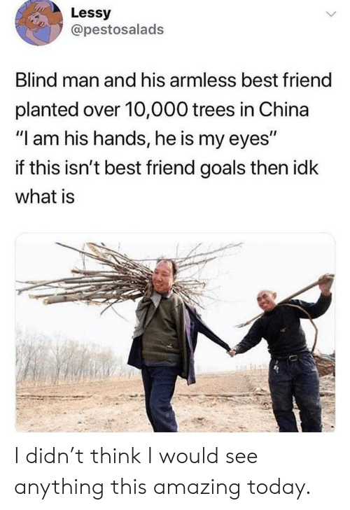 "10 000: Lessy  @pestosalads  Blind man and his armless best friend  planted over 10,000 trees in China  ""I am his hands, he is my eyes""  if this isn't best friend goals then idk  what is I didn't think I would see anything this amazing today."