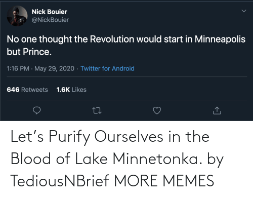 lake: Let's Purify Ourselves in the Blood of Lake Minnetonka. by TediousNBrief MORE MEMES