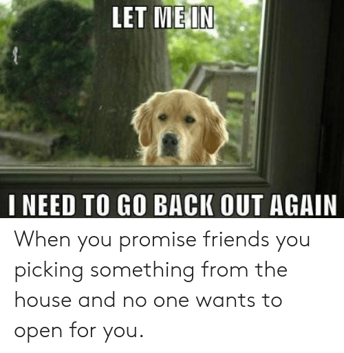 Friends, House, and Back: LET ME IN  I NEED TO GO BACK OUT AGAIN When you promise friends you picking something from the house and no one wants to open for you.