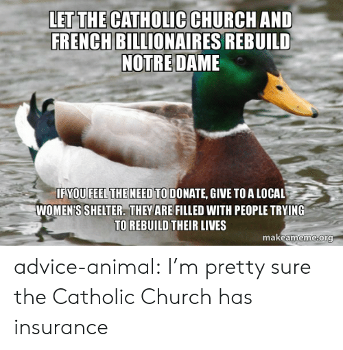 Advice Animal: LET THE CATHOLIC CHURCH AND  FRENCH BILLIONAIRES REBUILD  NOTRE DAME  IFYOU FEELTHE NEED TO DONATE, GIVE TOA LOCAL  WOMEN'S SHELTER. THEY ARE FILLED WITH PEOPLE TRYING  TO REBUILD THEIR LIVES  makeameme org advice-animal:  I'm pretty sure the Catholic Church has insurance