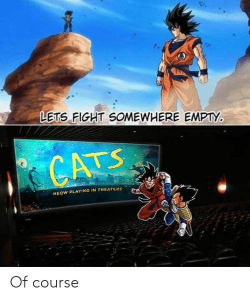 empty: LETS FIGHT SOMEWHERE EMPTY.  CATS  MEOW PLAYING IN THEATERS Of course