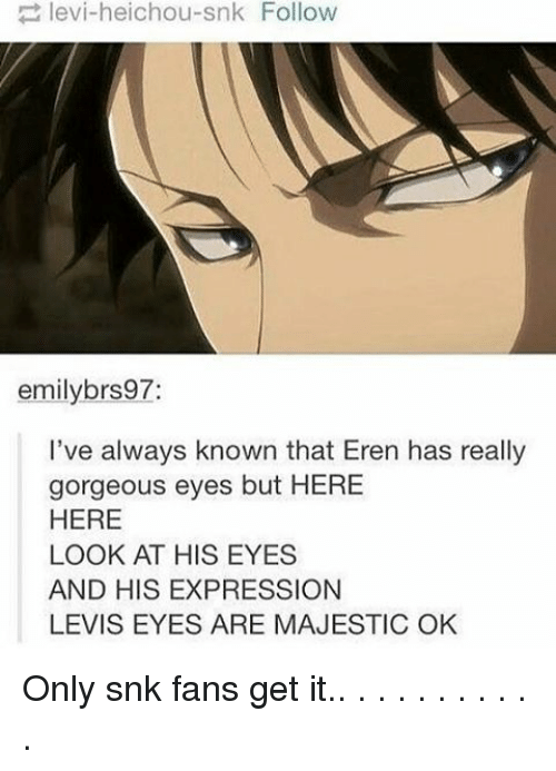 Majesticity: levi-heichou-snk Follow  emily brs97:  I've always known that Eren has really  gorgeous eyes but HERE  HERE  LOOK AT HIS EYES  AND HIS EXPRESSION  LEVIS EYES ARE MAJESTIC OK Only snk fans get it.. . . . . . . . . . .