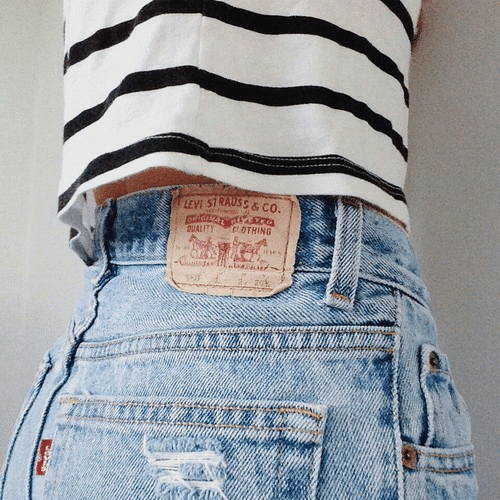 Levi, Levi Strauss, and Strauss: LEVI STRAUSS& co