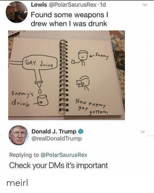 Drunk, Trump, and MeIRL: Lewis @PolarSaurusRex.1d  Found Some weapons  drew when I was drunk  -Enem  (GA in𤫢.PE  Enemy's  drink  ,) Donald J. Trump  @realDonaldTrump  Replying to @PolarSaurusRex  Check your DMs it's important meirl