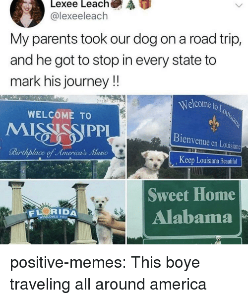 America, Beautiful, and Journey: @lexeeleach  My parents took our dog on a road trip,  and he got to stop in every state to  mark his journey!!  Welcome to  OLo  WELCOME TO  Bienvenue en Louisiane  Keep Louisiana Beautiful  Sweet Home  Alabama  RIDA  S YoU positive-memes:  This boye traveling all around america