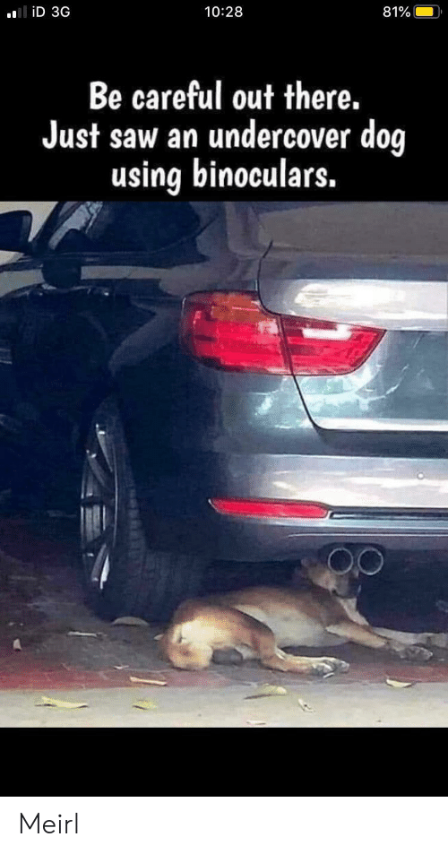 undercover: liD 3G  10:28  81%  Be careful out there.  Just saw an undercover dog  using binoculars. Meirl