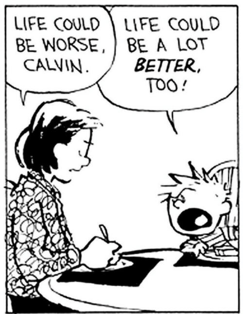 calvin: LIFE COULDLIFE COULD  BE WORSE, BE A LOT  BETTER,  TOO!  CALVIN