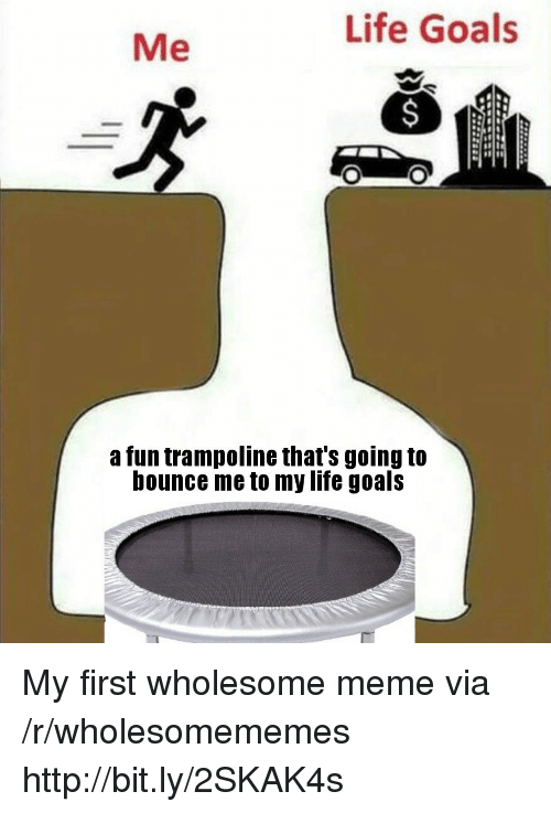 Goals, Life, and Meme: Life Goals  Me  a fun trampoline that's going to  bounce me to my life goals My first wholesome meme via /r/wholesomememes http://bit.ly/2SKAK4s
