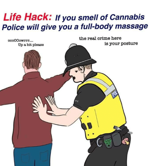 Cannabis: Life Hack: If you smell of Cannabis  Police will give you a full-body massage  ooo00owrrr....  the real crime here  Up a bit please  is your posture  POL  LICE  THIRST  AID