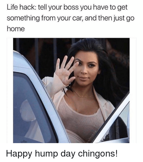 Hump Day: Life hack: tell your boss you have to get  something from your car, and then just go  home Happy hump day chingons!