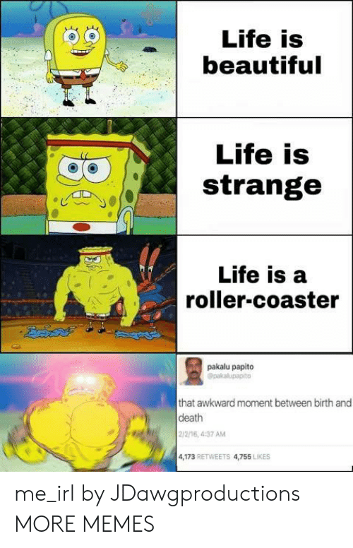 papito: Life is  beautiful  Life is  strange  Life is a  roller-coaster  pakalu papito  Opakalupapito  that awkward moment between birth and  death  2/2/16, 4:37 AM  4,173 RETWEETS 4,755 LIKES me_irl by JDawgproductions MORE MEMES