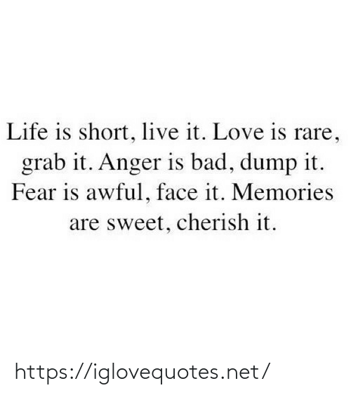 Life Is: Life is short, live it. Love is rare,  grab it. Anger is bad, dump it.  Fear is awful, face it. Memories  are sweet, cherish it. https://iglovequotes.net/