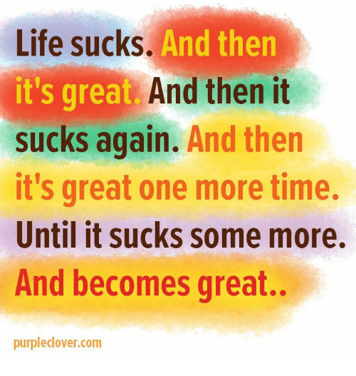 It Sucked: Life sucks.  And then  it's great. And then it  sucks again.  And then  it's great one more time.  Until it sucks some more.  And becomes great.  purpledover.com