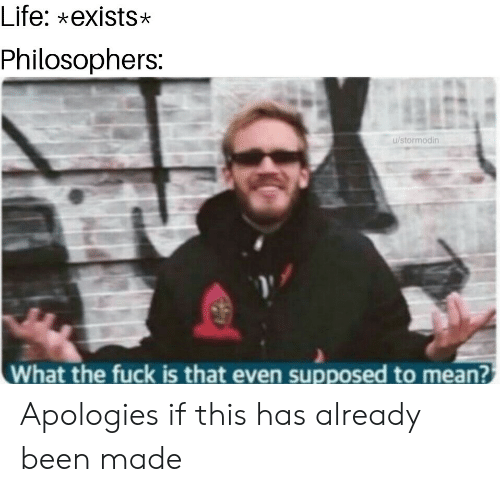 philosophers: Life: xexists*  Philosophers:  u/stormodin  What the fuck is that even supposed to mean? Apologies if this has already been made