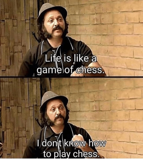 Chess, How To, and Humans of Tumblr: Lifel is like a  gamelof chess.  I dont know how  to play chess  0  0