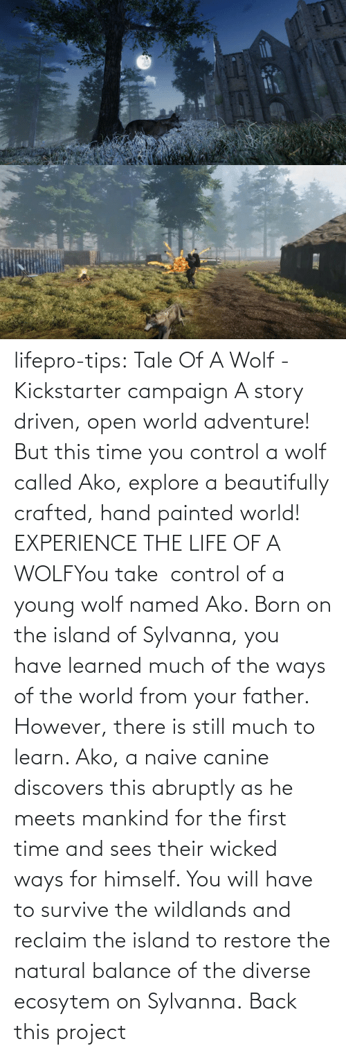 Experience: lifepro-tips: Tale Of A Wolf - Kickstarter campaign   A story driven, open world adventure! But this time you control a wolf  called Ako, explore a beautifully crafted, hand painted world! EXPERIENCE THE LIFE OF A WOLFYou take  control of a young wolf named Ako. Born on the island  of Sylvanna, you have learned much of the ways of the world from your  father. However, there is still much to learn. Ako, a naive canine  discovers this abruptly as he meets mankind for the first time and sees  their wicked ways for himself. You will have to survive the wildlands  and reclaim the island to restore the natural balance of the diverse  ecosytem on Sylvanna.   Back this project