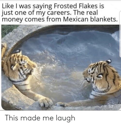 Mexican: Like I was saying Frosted Flakes is  just one of my careers. The real  money comes from Mexican blankets. This made me laugh