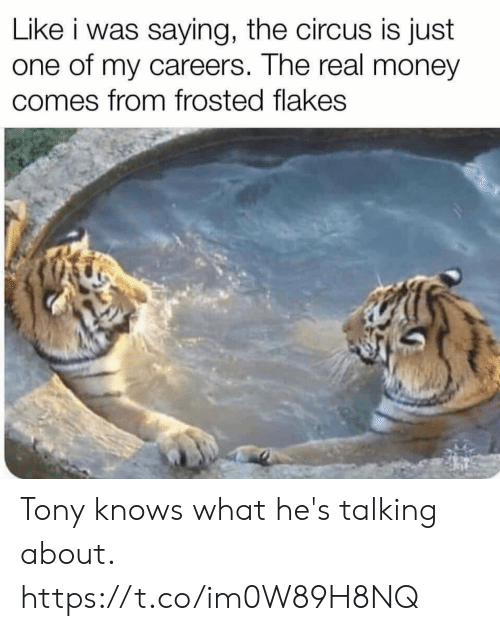 tony: Like i was saying, the circus is just  one of my careers. The real money  comes from frosted flakes Tony knows what he's talking about. https://t.co/im0W89H8NQ