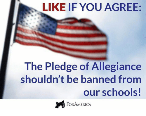 Memes, Pledge of Allegiance, and 🤖: LIKE IF YOU AGREE:  The Pledge of Allegiance  shouldn't be banned from  our schools  FORAMERICA