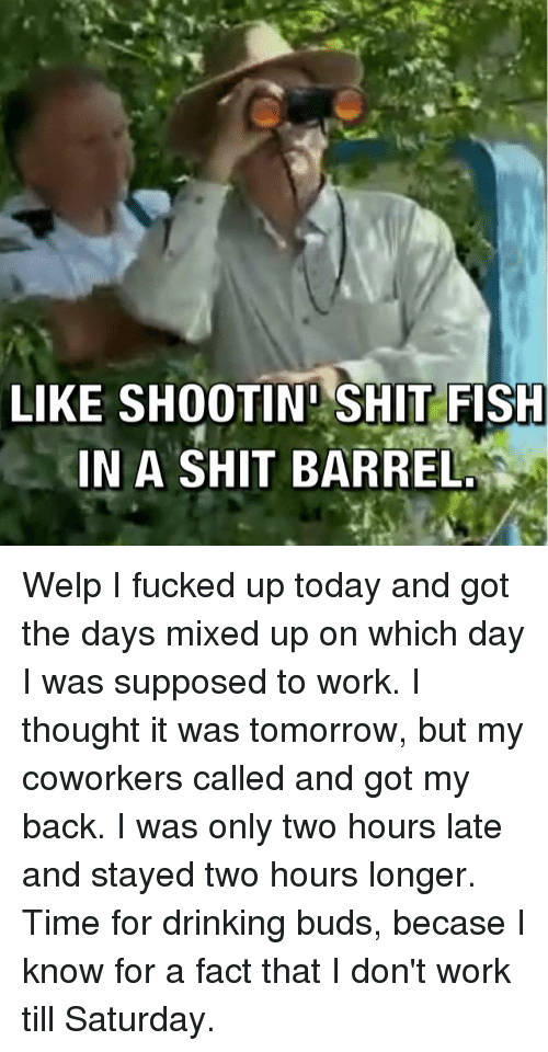 Drinking, Shit, and Work: LIKE SHOOTIN SHIT FISH  IN A SHIT BARREL