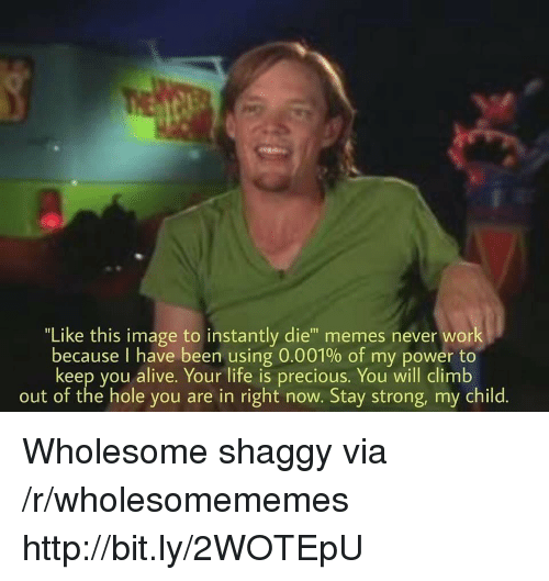 "Alive, Life, and Memes: ""Like this image to instantly die"" memes never work  because I have been using 0.001% of my power to  keep you alive. Your life is precious. You will climb  out of the hole you are in right now. Stay strong, my child. Wholesome shaggy via /r/wholesomememes http://bit.ly/2WOTEpU"