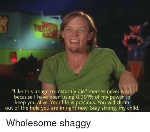 "Alive, Life, and Memes: ""Like this image to instantly die"" memes never work  because I have been using 0.001% of my power to  keep you alive. Your life is precious. You will climb  out of the hole you are in right now. Stay strong, my child. Wholesome shaggy"