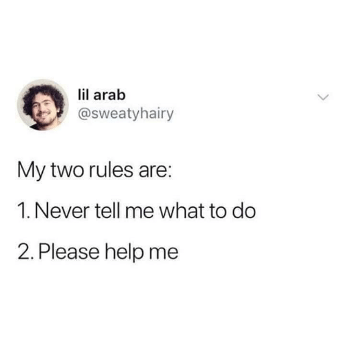 Arab: lil arab  @sweatyhairy  My two rules are:  1. Never tell me what to do  2. Please help me