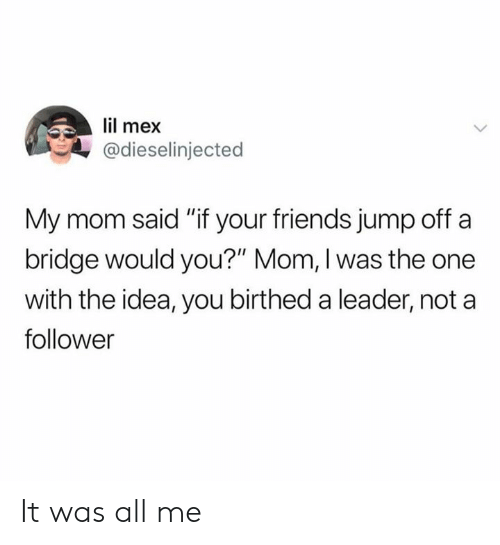 "follower: lil mex  @dieselinjected  My mom said ""if your friends jump off a  bridge would you?"" Mom, I was the one  with the idea, you birthed a leader, not a  follower It was all me"